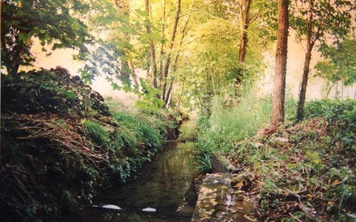 Zuid Frankrijk beekje Domaine du Merlet