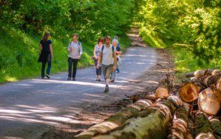wandelen activiteiten Domaine du Merlet Frankrijk