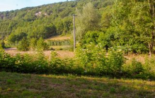 Domaine du Merlet heuvel