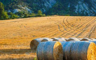 foto strobalen platteland Zuid Frankrijk Lot-et-Garonne