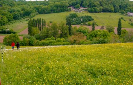 uitzicht vanaf writer's block-hut Domain du Merlet Frankrijk