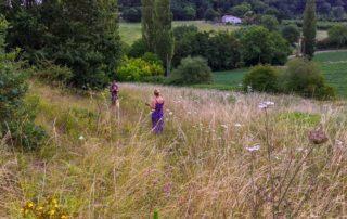foto heuvel Domaine du Merlet vakantie domein Lot-et-Garonne