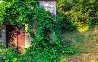 foto voorzijde houten cabane in schuur Domaine du Merlet